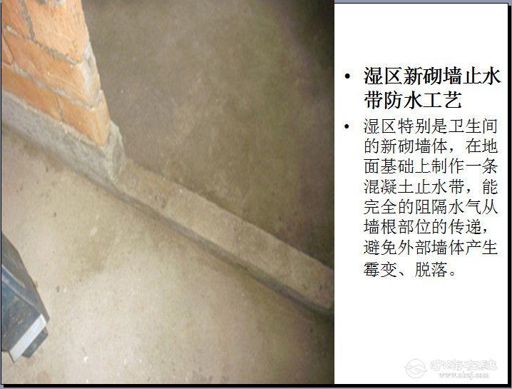 305_副本.jpg