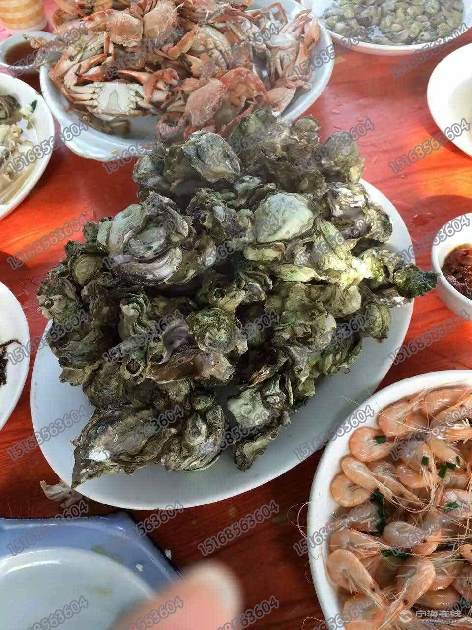 游玩海岛,船上享受海鲜大餐,家庭朋友小聚,公司聚餐都是极好的选择.