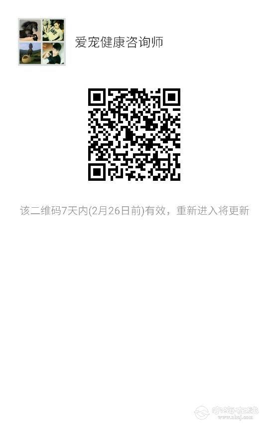 183126pgf93eiq34t22yfn.png