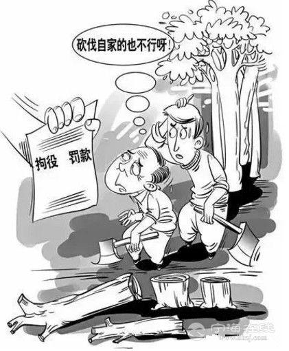 搜狗截图17年12月09日1650_19.jpg