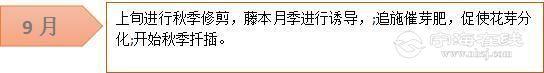 微信图片_20180303201911.jpg