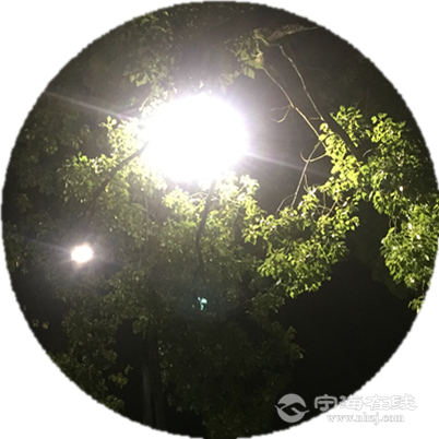 IMG_8297_副本.png